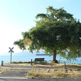 A bench with a view. royalty free stock images