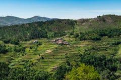 Viewpoit of Sistelo`s terraces
