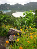 Viewpont ko phi phi island thailand. Tropical flowers around the viewpoint on Koh phi phi don island thailand stock images