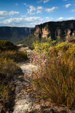Views across the clifftops Blue Mountains Australia Stock Images