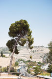 Views across Jerusalem Stock Images