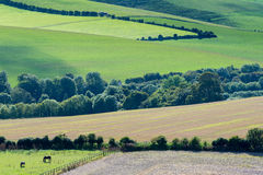 Views across the South Downs Stock Photo