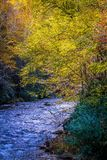Views along virginia creeper trail during autumn royalty free stock image