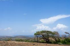 Views around Arikok national park Aruba a small Caribbean island Stock Photo