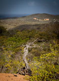 Views around Curacao Caribbean island Royalty Free Stock Images