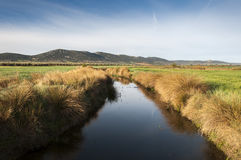 Views of Arroyo de la Becea. It is an intermittent stream, tributary of the River Guadiana, in Ciudad Real Province, La Mancha, Spain Stock Photos
