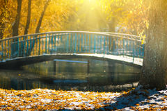 Views of the autumn park with yellow leaves on snow in sun rays and  river bridge. Stock Image