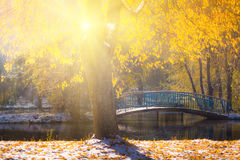 Views of the autumn park with yellow leaves on snow in sun rays and  river bridge. Royalty Free Stock Photography