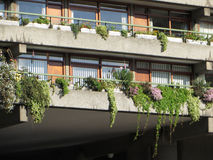 Views Of The Barbican Centre. Views of the residential flats city of Londons Barbican area Stock Photo