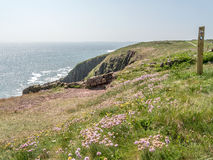 Views of Caldey Island Royalty Free Stock Images