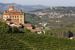 Views of the Castle of Barolo. In the Langhe Royalty Free Stock Photo