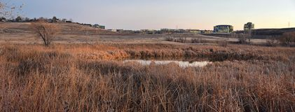 Views from the Cradleboard Trail walking path on the Carolyn Holmberg Preserve in Broomfield Colorado surrounded by Cattails, wild. Life, plains and Rocky stock photo