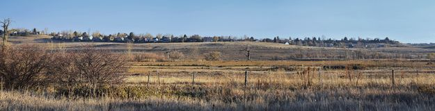 Views from the Cradleboard Trail walking path on the Carolyn Holmberg Preserve in Broomfield Colorado surrounded by Cattails, wild. Life, plains and Rocky royalty free stock photo