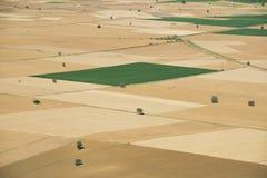 Views of crop fields Stock Photo