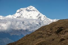 Views of Dhaulagiri from high trails to Kopra Ridge, Nepal royalty free stock image