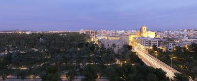 Views of Elche city at sunset in front of the palm grove. Stock Photo