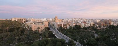 Views of Elche city at sunset in front of the palm grove. Stock Images
