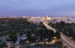 Views of Elche city at sunset in front of the palm grove. Royalty Free Stock Image