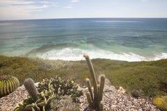 Views of Encinitas Coast Royalty Free Stock Photo