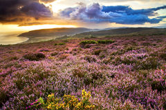 Views from Exmoor Stock Photos
