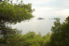 Views of the expanse the sea through the green needles Royalty Free Stock Photo