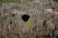 Views of forest from the birds eye view from a hot air balloon a Stock Photography