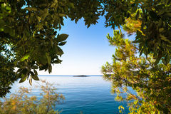 Views through the forest on a calm sea and with a clear blue sky Stock Image