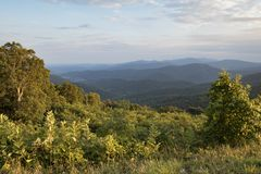 Views That Go On Forever. The vista points in Shenandoah National Park are amazing. The land stretches out on all sides of these rocky hilltops Royalty Free Stock Photography