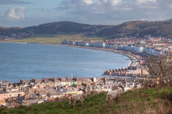 Views from The Great Orme Stock Image