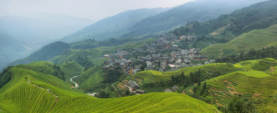 Views of green Longji terraced fields and Pingan village Stock Photos