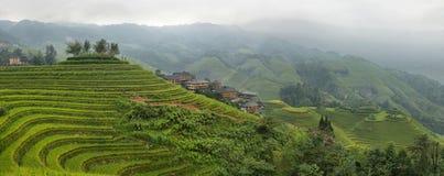 Views of green Longji terraced fields Stock Photography