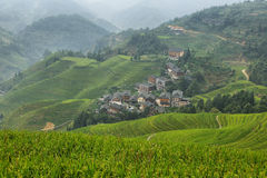 Views of green Longji terraced fields and Tiantouzhai village Royalty Free Stock Photos