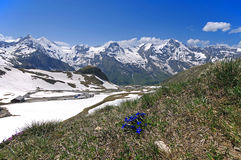 Views of the grossglockner High Alpine Road in Austria Europe Stock Photography
