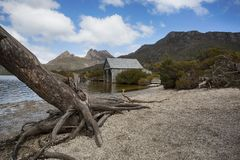 Iconic Views of The Tasmanian Boat Shed. Views from the hiking trail that circumnavigates Dove Lake royalty free stock photos