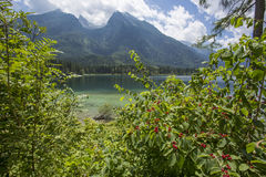 Views of the Hintersee Royalty Free Stock Photo