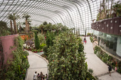 Views inside Flower Dome, Singapore. View of interior of Flower Dome in Gardens by the Bay, Singapore Stock Photography