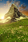 Views of the Matterhorn at sunset Royalty Free Stock Images