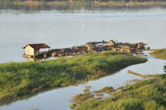 Views Mekong River Thailand Countryside Stock Images
