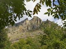 Views of mount Demerdzhi through the branches of trees Stock Photos