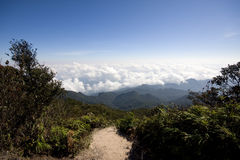 The views from Mount Tahan highest peak Stock Images