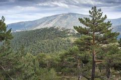 Views of Navacerrada Ski resort Royalty Free Stock Image