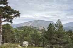 Views of Navacerrada Ski resort Stock Image