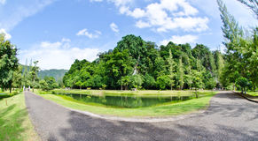 Views of the park. Royalty Free Stock Image