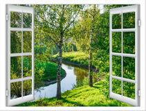 Views of the pond Royalty Free Stock Images