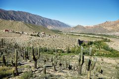 Views from the. Pucara de Tilcara pre-inca fortification,  Jujuy province, Argentina Royalty Free Stock Photography