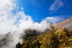 Views on Rinjani Stock Image