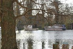 Views from the River Thames in Surrey. The United Kingdom royalty free stock photo
