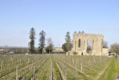 Views of Saint Emilion stock images