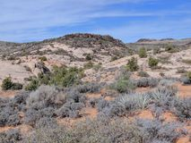 Views of sandstone and lava rock mountains and desert plants around the Red Cliffs National Conservation Area on the Yellow Knolls. Sweeping Views of sandstone Royalty Free Stock Photography