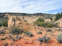 Views of sandstone and lava rock mountains and desert plants around the Red Cliffs National Conservation Area on the Yellow Knolls. Sweeping Views of sandstone Stock Photos